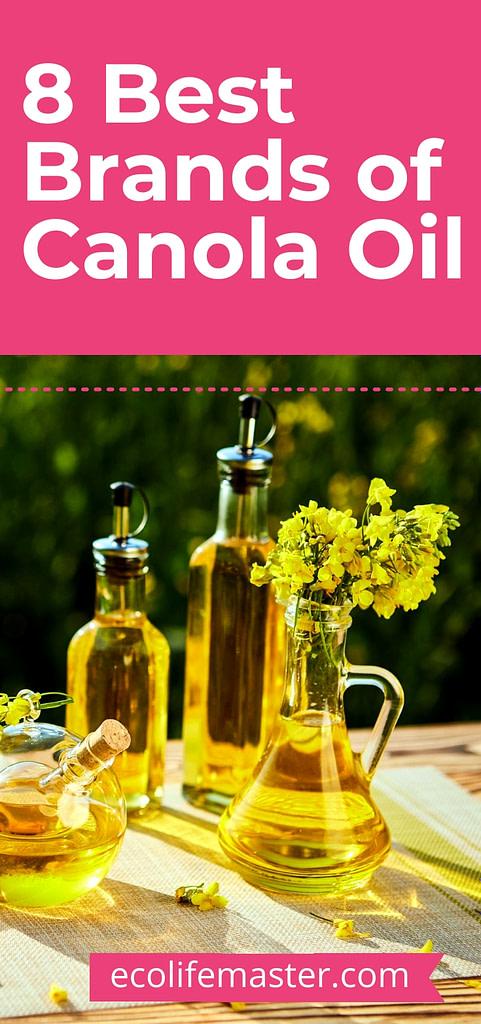 Best 8 brands of Canola Oil