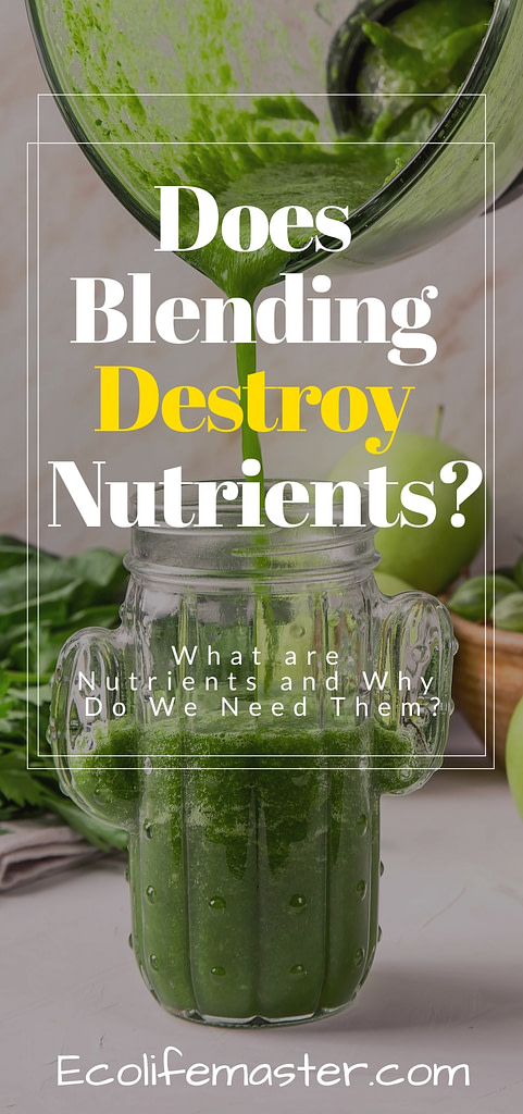 Does Blending Destroy Nutrients in Smoothies?