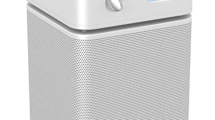 Best Air Purifier for Mold 2020 – Reviews and Buyer's Guide