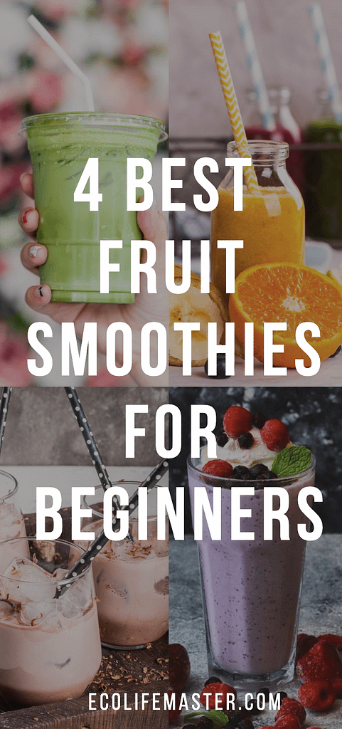 Fruit Smoothies for Beginners - 4 Best Recipes